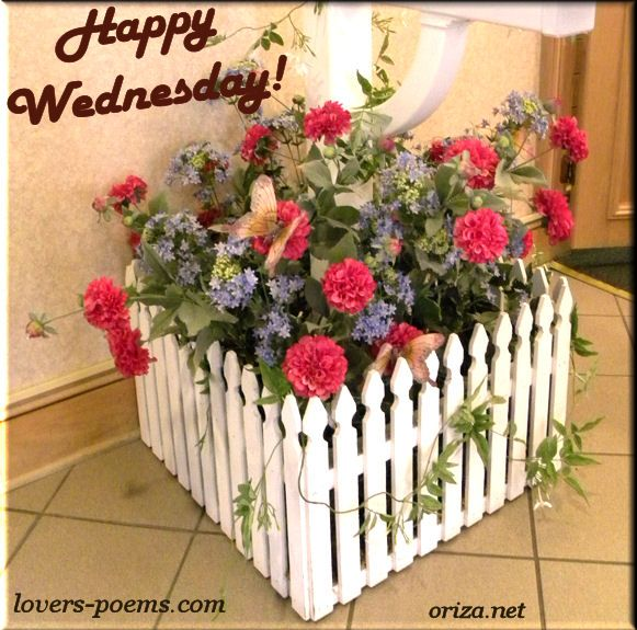 Image result for nice wednesday images
